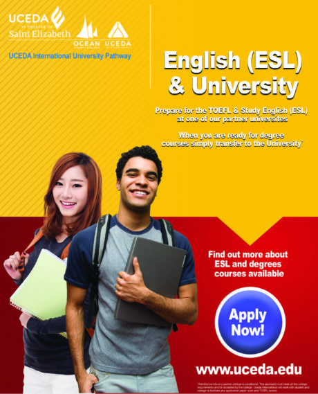 UCEDA - English and University